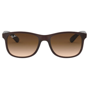 Ray Ban ANDY RB4202 60731